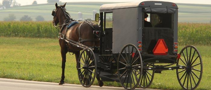 quality-handcrafted-furniture-amish-buggy-footer-image